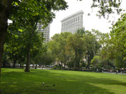 Flatiron Building vom Madison Square Park aus gesehen