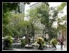 new-york-park03.jpg