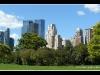 new-york-park59.jpg